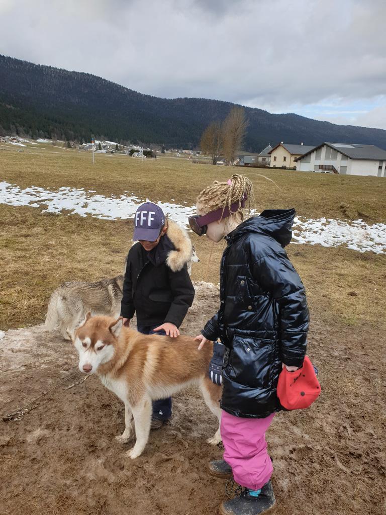 Deux enfants caressent un chien de traineau