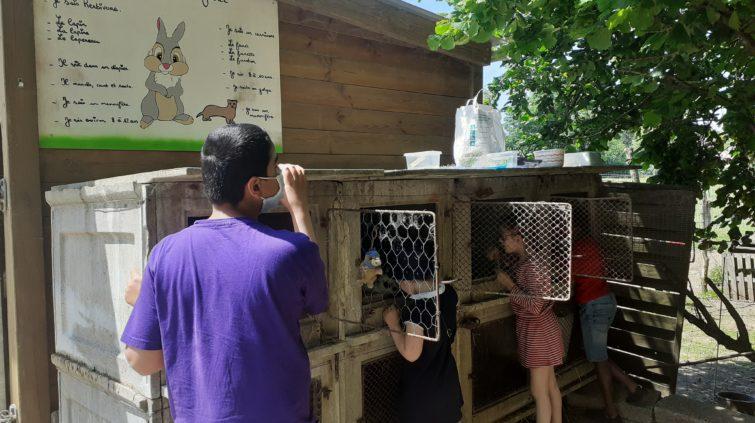 Des enfants devant des cages à lapin